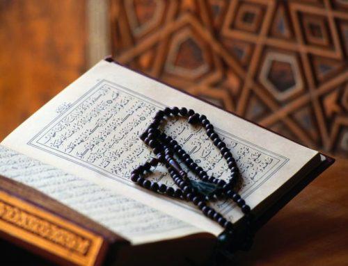 FIFS arbete mot och efter Koranbränningen i Malmö